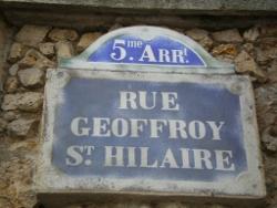 Rue Geoffroy St Hilaire
